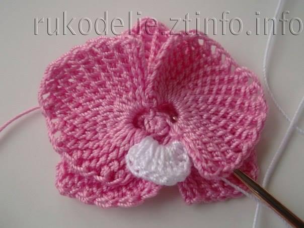 Orchidee Au Crochet Le Monde Selon Ray Zab