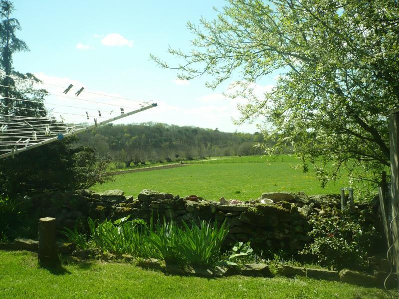Le fond du jardin le blog de titanique for 6 jardin guillaume bouzignac