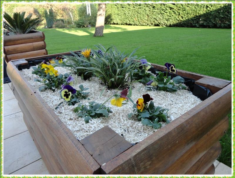 fleurissement de la terrasse 10 novembre 2011 la guillaumette. Black Bedroom Furniture Sets. Home Design Ideas